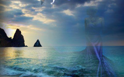 Ocean Found Digital